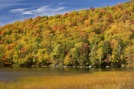 red maples: Dramatic fall foliage of red maples and yellow birches on hillside along shore of Russell Pond in the White Mountains near Woodstock, New Hampshire, horizontal image. Stock Photo