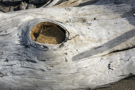 open hole: Bleached driftwood log with open hole and brown sand inside, on the beach at Flagstaff Lake in northwestern Maine. Stock Photo