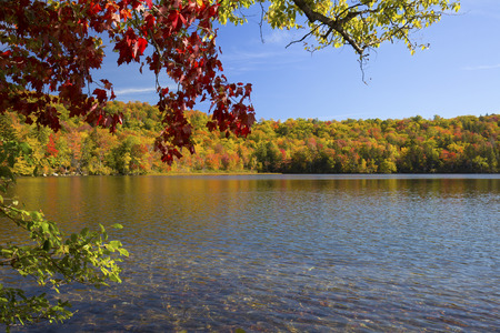 woodstock: Colorful branches frame fall foliage along shore of Russell Pond in the White Mountains near Woodstock, New Hampshire, horizontal image.