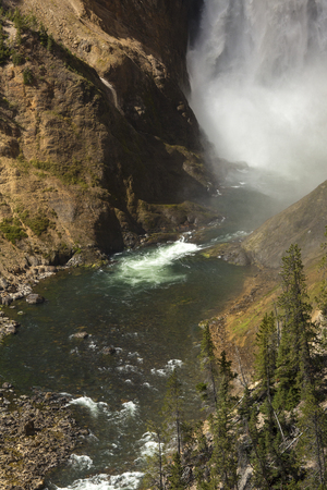lower yellowstone falls: Bottom of Lower Falls of the Yellowstone River in Yellowstone National Park; Wyoming; with mist; cliffs; and rapids.