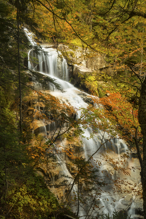 notch: Full view of Cloudland Falls on Dry Brook, with autumn foliage in front, as a shroud or scrim, along the Falling Waters Trail in Franconia Notch of the White Mountains National Forest in northern New Hampshire.