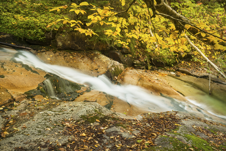 notch: Sluice of one of the cascades of Swiftwater Falls on Dry Brook, and autumn foliage along the Falling Waters Trail in Franconia Notch of the White Mountains National Forest in northern New Hampshire.