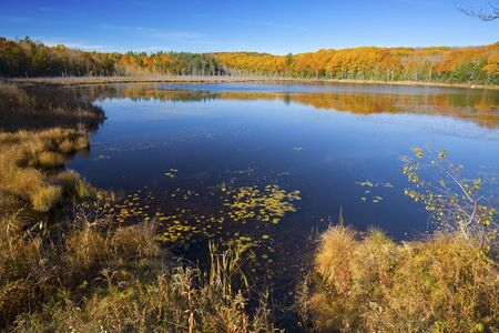 pond: Fall foliage on the shoreline encircling Pond Hill Pond in Norfolk, Connecticut, with blue skies on a sunny day in October. Stock Photo