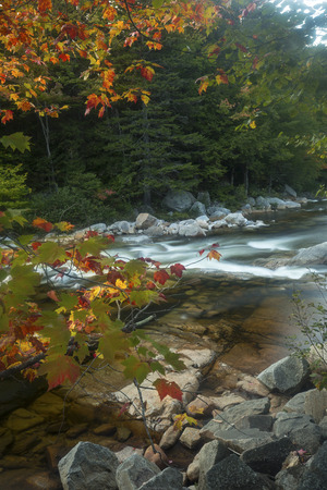 swift: Fall foliage and rapids at Rocky Gorge of the Swift River in the White Mountains National Forest in northern New Hampshire.