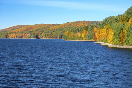 orange county: Colorful red, yellow and orange foliage on the shoreline of Barkhamsted Reservoir in Litchfield County, Connecticut, on a sunny day in October. Stock Photo