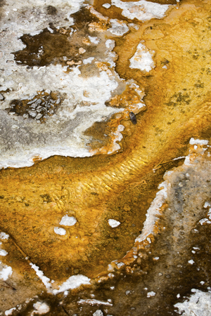 hot water geothermal: Colorful, orange pool of hot water makes an abstract pattern overlying the travertine rock of a geothermal area in the Yellowstone caldera of Wyoming. Stock Photo