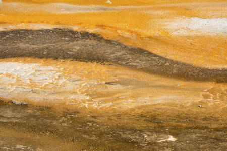 hot water geothermal: Colorful, striped orange geothermal pool of hot water overlying the travertine rock of Mammoth Hot Springs in Yellowstone National Park, Wyoming.