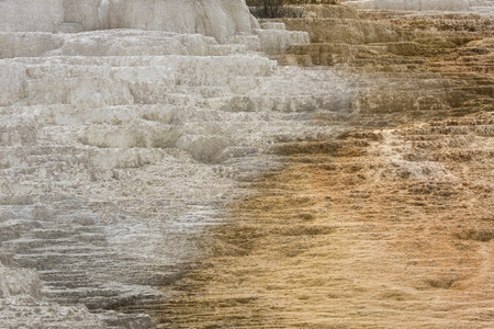 hot water geothermal: Geothermal flow of hot, carbonate rich water, forms orange and white travertine terraces at Mammoth Hot Springs in Yellowstone National Park, Wyoming.