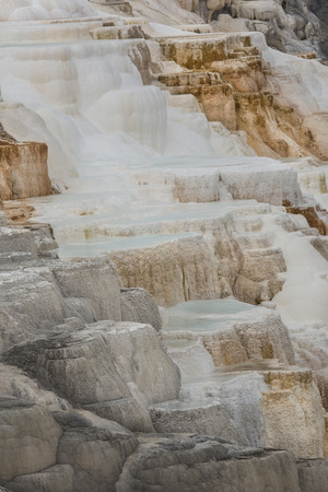 hot water geothermal: Geothermal flow of hot, carbonate rich water, forms cascading, dark orange travertine terraces at Mammoth Hot Springs in Yellowstone National Park, Wyoming.