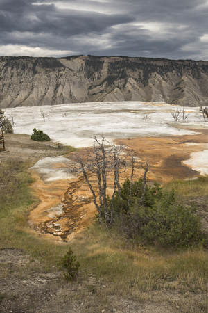 hot water geothermal: Colorful, orange geothermal streams and pools of hot water with white carbonate deposits overlying the travertine rock of Mammoth Hot Springs in Yellowstone National Park, Wyoming, with eroded, fluted ridges of a plateau and dark clouds in the background.