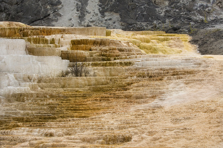 hydrothermal: Geothermal flow of hot, carbonate rich water, forms orange and white travertine terraces at Mammoth Hot Springs in Yellowstone National Park, Wyoming.
