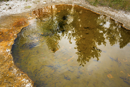 Reflections in a brown thermal pool, with bubbles making rings near the orange rim, Yellowstone National Park, Wyoming.