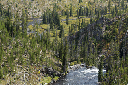 pine creek: Tower Creek from trail above, Yellowstone National Park, Wyoming. Stock Photo