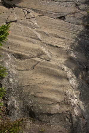 grooves: Glacial grooves in bedrock near summit of Mt. Kearsarge, New Hampshire, vertical image.