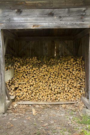 carbon neutral: Woodshed nearly full of split firewood, getting ready for coming winter, New England.