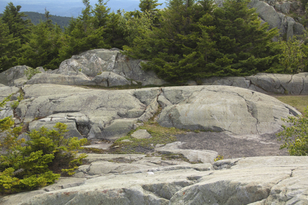 grooves: Glacial grooves and rounded outcrops in bedrock near summit of Mt. Kearsarge, New Hampshire, horizontal image.