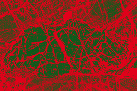 Red network projects like blood vessels over a green background in an abstract micrograph of peridotite rock, at 40x.