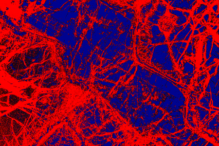 Blue and red network in abstract, polarizing micrograph of peridotite rock, at 40x. Stock Photo