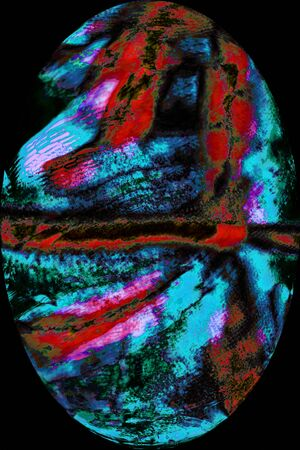encircling: Abstract, red and blue moss leaves in oval vignette on black background, resembling an egg in digitally manipulated micrograph at 100x.