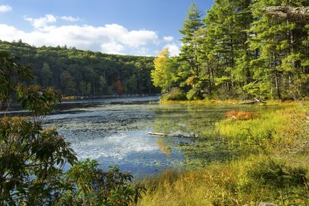Early autumn comes to the forested shores of Breakneck Pond in Bigelow Hollow State Park in Union, Connecticut.