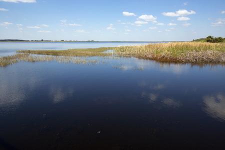 wildlife preserve: Lake Tohopekaliga at Twin Oaks Conservation Area in St. Cloud, Florida, with abundant marsh wildlife habitat.