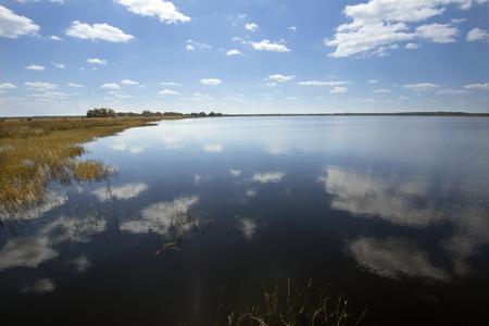 wetland conservation: Lake Tohopekaliga at Twin Oaks Conservation Area in St. Cloud, Florida, with abundant marsh wildlife habitat.