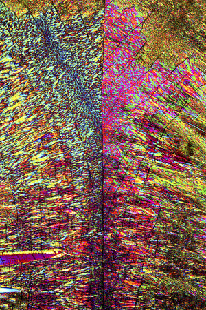 Abstract micrograph of ascorbic acid crystals in a bewildering array of shapes and colors.