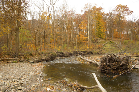 Rapids in Brandywine Creek in late autumn woods of Cuyahoga Valley National Park in northern Ohio. Banco de Imagens