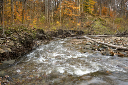 Rapids in Brandywine Creek in late autumn woods of Cuyahoga Valley National Park in northern Ohio. 免版税图像