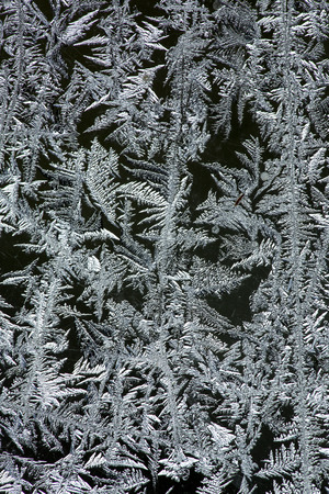 Feathery ice patterns on a frosted window in the winter in northern Maine.
