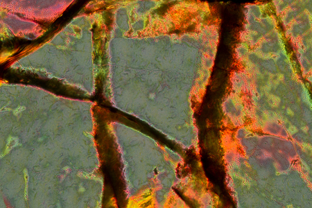 Gray and orange, abstract micrograph of the mineral olivine pyroxenite, viewed with a polarizing microscope at 200x and digitally manipulated in post-processing. Stock Photo