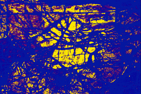 Bright blue and yellow, abstract micrograph of the mineral olivine pyroxenite, viewed with a polarizing microscope at 100x and digitally manipulated in post-processing.