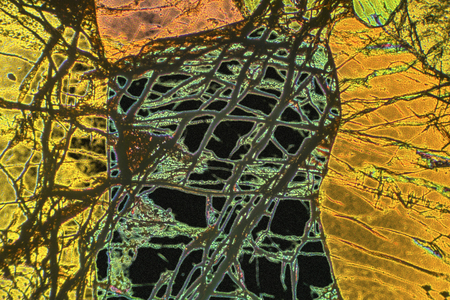 Abstract micrograph of the mineral olivine pyroxenite, viewed with a polarizing microscope at 100x and digitally manipulated in post-processing. 免版税图像