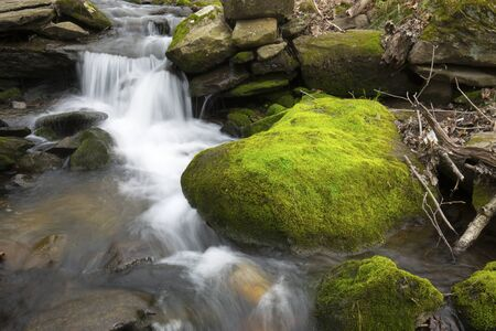 Rapids in a small brook, with bright green, moss covered rocks at the Belding Wildlife Management Area in Vernon, Connecticut. Stock fotó - 125800093