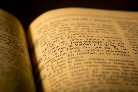 catholicism: Holy Bible detail