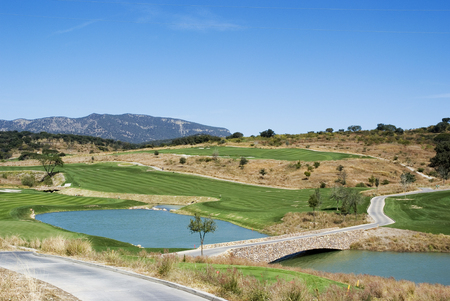 blissfull: A golf field landscape