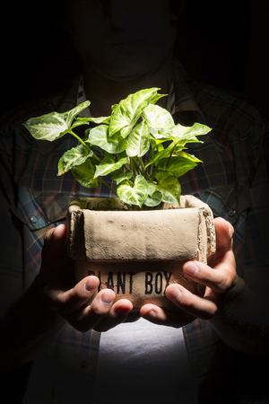 plant hand: Farmer hand holding a fresh young plant. Symbol of new life and environmental conservation