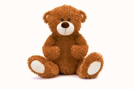 Teddy bear Brown color soft toy with shadow on white background