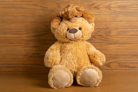 Teddy bear standing indoors with a wooden floor and wall.