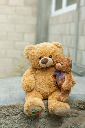 Teddy bear with little bear in outdoor garden. Standard-Bild