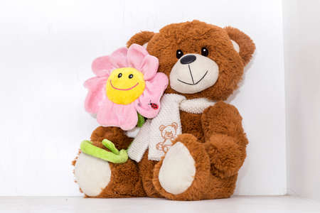 Teddy bear soft toy in child's bedroom with colorful books and pink flower
