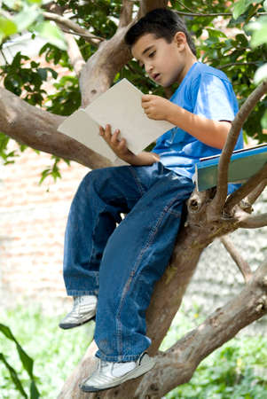 A boy reading sit in the tree