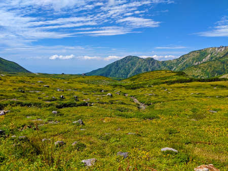 This photo was taken on top of Mount Tate or Tateyama during the summer time. Stock Photo