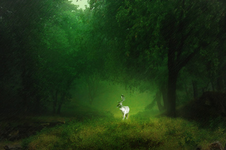 synthesis: deer in Woods