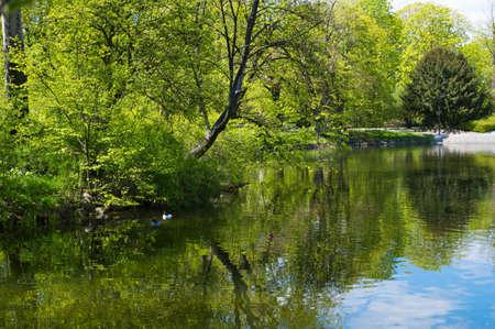 Lake in the park in spring time. Lazienki Krolewskie, Warsaw, Poland.