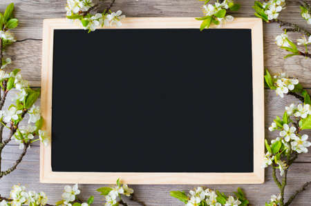 Frame of flowering plum branches with space for text on a blackboard