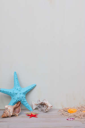 Blue starfish and seashells on a light gray shabby background. Summer time for sea and vacation. Archivio Fotografico