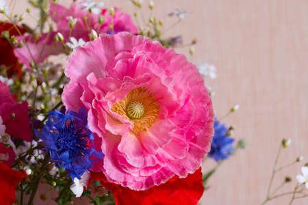 Bouquet of red and pink poppy and blue cornflower on light background close up. Summer flowers background. Archivio Fotografico