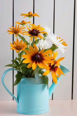 Orange gardens daisies, rudbeckia, flower in the blue watering can.