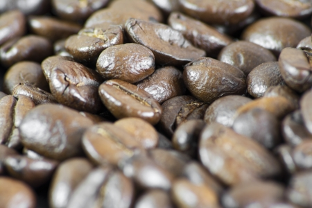 Details of coffee beans  photo